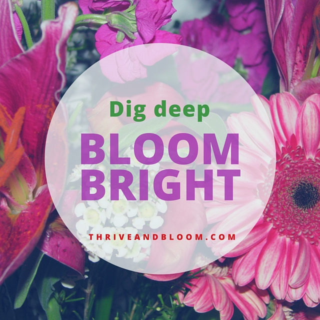 ~ Thriveandbloom Educator Haven ~ (free online group)
